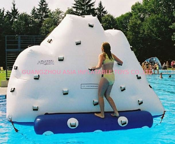 3m Height Inflatable Water Sports , Inflatable Climbing Wall With Water Slide تامین کننده