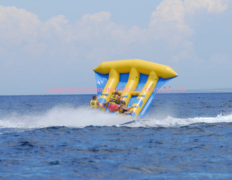 Funny Air Sealed Inflatable Flying Fish Tube with CE / UL Certificate تامین کننده
